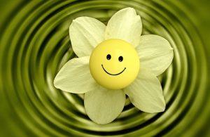 Cosa determina la nostra felicità?